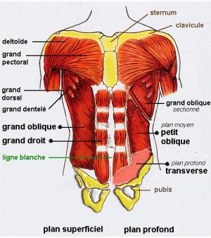 caisson-abdominal
